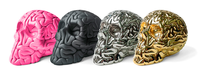 Skull Brain Collection